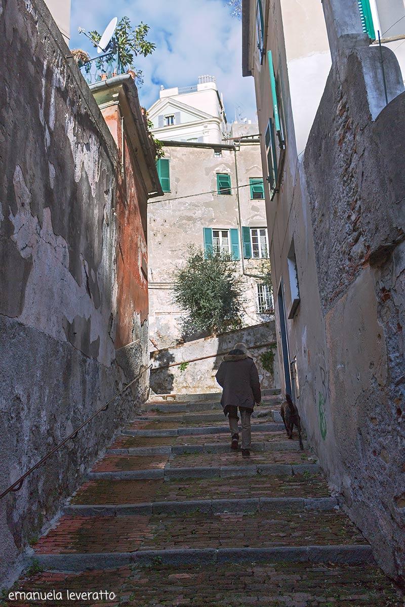 Via Olivella-quartiere del carmine