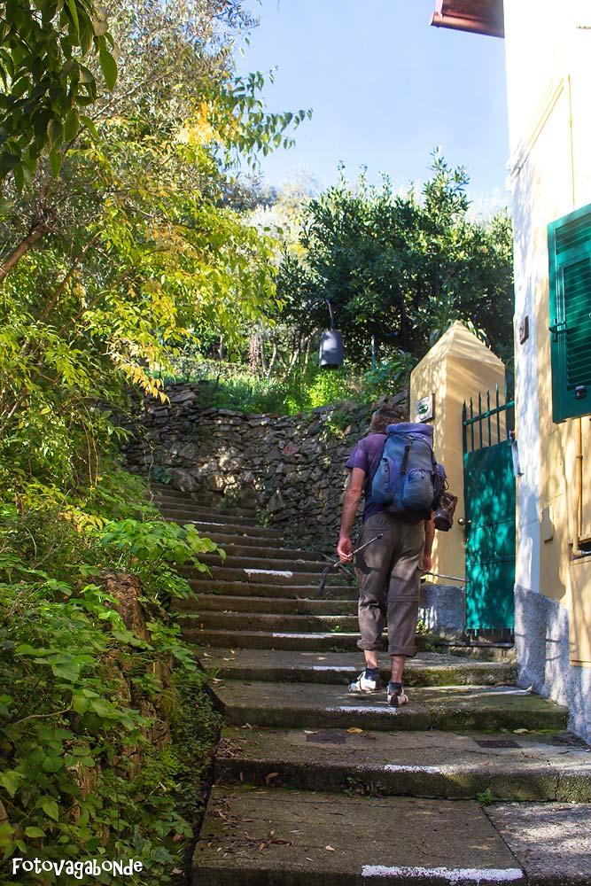 sentiero-camogli-san-rocco